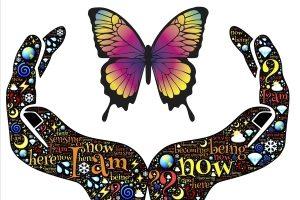 cursus transformatie